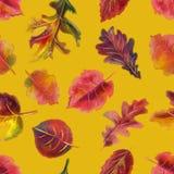 手拉的水彩五颜六色的秋天无缝的样式 免版税库存照片