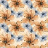 手拉的水彩例证无缝的样式木槿flo 库存例证
