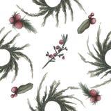 手拉的水彩例证 杉木分支和红色莓果在白色背景 皇族释放例证