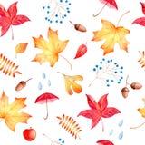 手拉的水彩无缝的样式秋天题材 向量例证