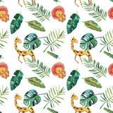 手拉的水彩无缝的样式 绿色热带叶子和野生动物在白色背景 库存例证