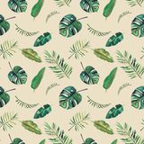 手拉的水彩无缝的样式 绿色热带叶子 库存例证