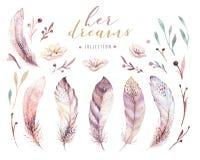 手拉的水彩绘画充满活力的羽毛集合 Boho样式玫瑰色翼 在白色查出的例证 鸟飞行好地产的lanscape 皇族释放例证