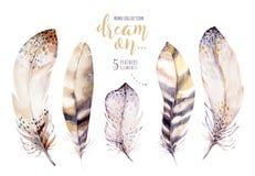 手拉的水彩绘画充满活力的羽毛集合 Boho样式玫瑰色翼 在白色隔绝的例证羽毛 免版税库存图片