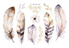 手拉的水彩绘画充满活力的羽毛集合 Boho样式玫瑰色翼 在白色隔绝的例证羽毛 免版税库存照片