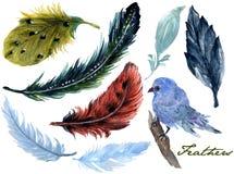 手拉的水彩绘画充满活力的蝴蝶和鸟羽毛集合Boho颜色样式翼水彩画羽毛背景的 皇族释放例证