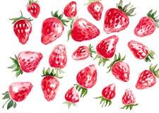 手拉的水彩草莓 库存照片