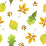 手拉的水彩,无缝的秋天样式 免版税库存照片