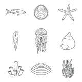 手拉的海生物的汇集在现代单音线型的在被隔绝的白色背景 传染媒介海星 免版税库存照片