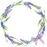 手拉的淡紫色花圈子  皇族释放例证