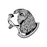 手拉的狗的面孔,有衣领的小猎犬的头在zentangle st 免版税库存照片