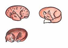 手拉的睡觉动物 免版税库存照片