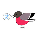 手拉的红腹灰雀说雪花 被隔绝的元素 免版税图库摄影