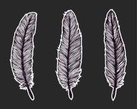 手拉的羽毛 免版税库存照片