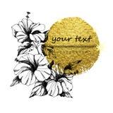 手拉的花传染媒介 异常的美丽的花 免版税库存照片