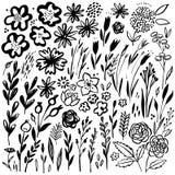 手拉的花卉集合 传染媒介花卉元素 与叶子和花的汇集 库存照片