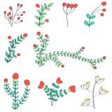 手拉的花和分支 免版税库存图片