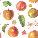 手拉的苹果样式 免版税库存图片