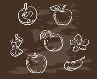 手拉的苹果的汇集在黑板的 减速火箭的葡萄酒样式食物设计 也corel凹道例证向量 库存照片