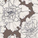 手拉的葡萄酒无缝的花卉样式 图库摄影
