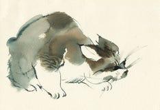 手拉的蓬松使用的小猫画象 水彩blotched虎斑猫 绘画宠物葡萄酒例证 皇族释放例证