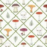 手拉的蘑菇无缝的样式 免版税图库摄影