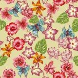 手拉的蝶粉花叶子样式无缝的背景 免版税库存照片