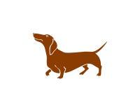 手拉的达克斯猎犬 向量例证