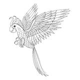 手拉的部族鹦鹉,成人着色页的鸟图腾 库存例证