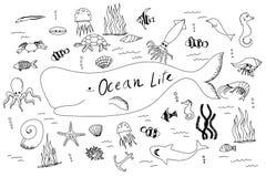 手拉的集合与海洋生活 免版税图库摄影