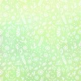 手拉的织地不很细花卉背景 与小的花和叶子的绿色模板 装饰模式 库存图片
