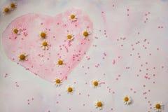 手拉的水彩心脏,装饰用小珠和新鲜的雏菊-华伦泰` s天的标志,精美桃红色 库存照片