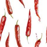 手拉的水彩无缝的样式用红色冷颤的胡椒 库存例证