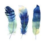 手拉的水彩羽毛集合 Boho样式 例证isol 库存图片
