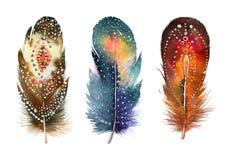 手拉的水彩羽毛集合 Boho样式 免版税库存图片