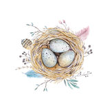 手拉的水彩艺术鸟巢用鸡蛋,复活节设计 免版税图库摄影