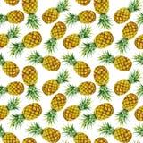 手拉的水彩菠萝 免版税图库摄影