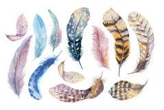 手拉的水彩绘画充满活力的羽毛集合 Boho样式 库存照片