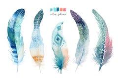 手拉的水彩绘画充满活力的羽毛集合 Boho样式 皇族释放例证