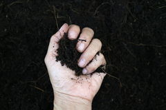 手拿着黑土壤 免版税图库摄影