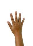 手指五 免版税图库摄影