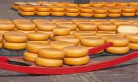 手推车在乳酪市场在阿尔克马尔,叫声上 库存图片