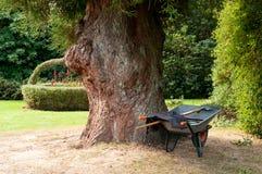 手推车结构树轮子 库存照片