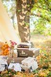 手提箱在秋天庭院里 免版税库存照片