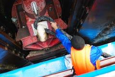 水手栓船到登上 免版税库存图片