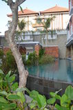 手段在巴厘岛 免版税图库摄影