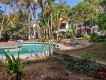 手段森林游泳场庭院旅馆风景 库存照片