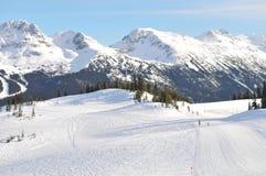 手段滑雪吹口哨 免版税库存照片