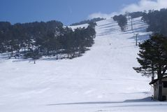手段滑雪 库存图片