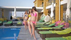 手段的女孩,美丽的长发女朋友愉快的公司游泳衣漫步的由游泳池边和休息室在夏天 股票视频